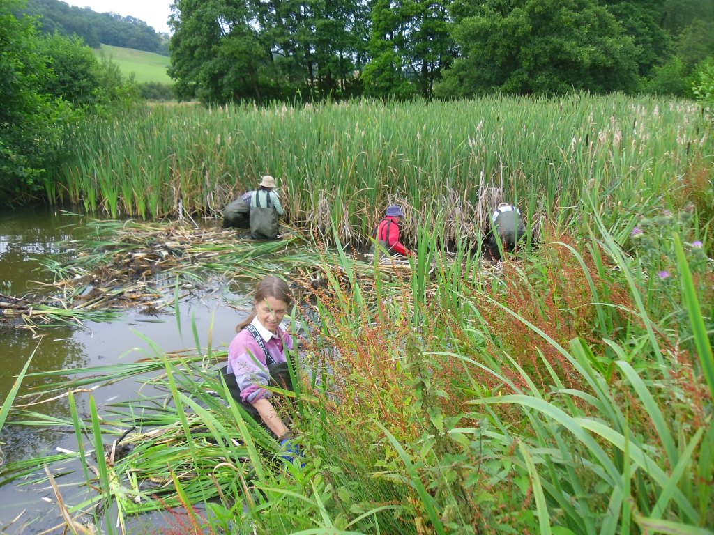Morville Hall 4th August Workday Shropshire And